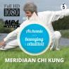 Meridiaan Chi Kung - HD Download