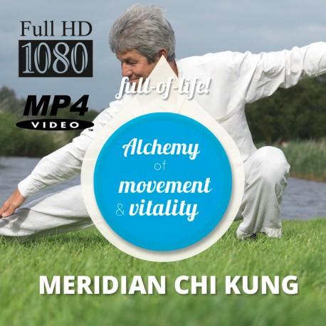 Meridiaan Chi Kung - Engelse HD Download